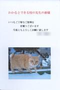 Cat3pg